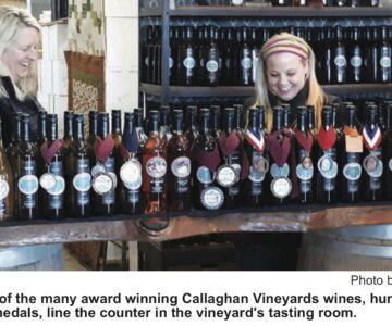 Local Winery Wins Big