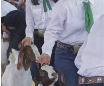 SCCFRA Planning to Host County Fair