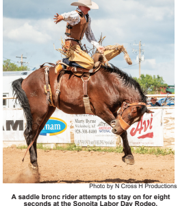 September a Busy Month At Sonoita Fairgrounds